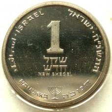 ИЗРАИЛЬ 1 ШЕКЕЛЬ 1995 г. UNC !!!  ИЗ НАБОРА АМЕРИКАНСКОЕ ЕВРЕЙСТВО !!!